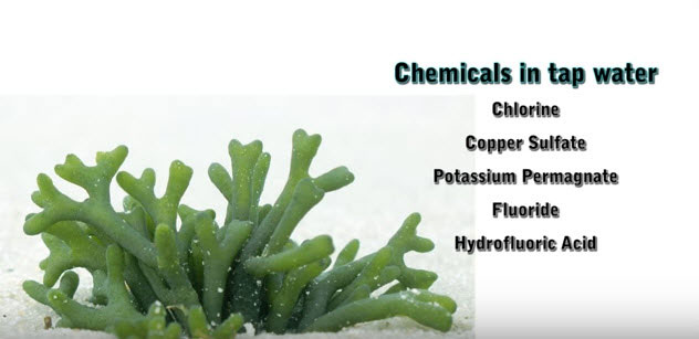 Common-chemicals-found-in-water-supply